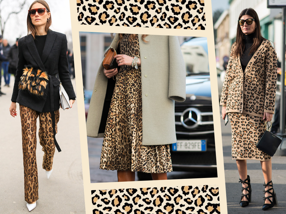 EVIDENZA_mix_match_animalier